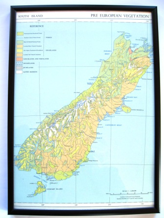 A 1950's vintage map featuring the pre-European vegetation of the South Island